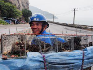Man selling squirrels on a bike in Vietnam