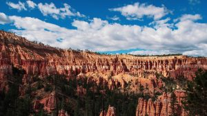 'The Hoodoos' Bryce Canyon National Park Utah