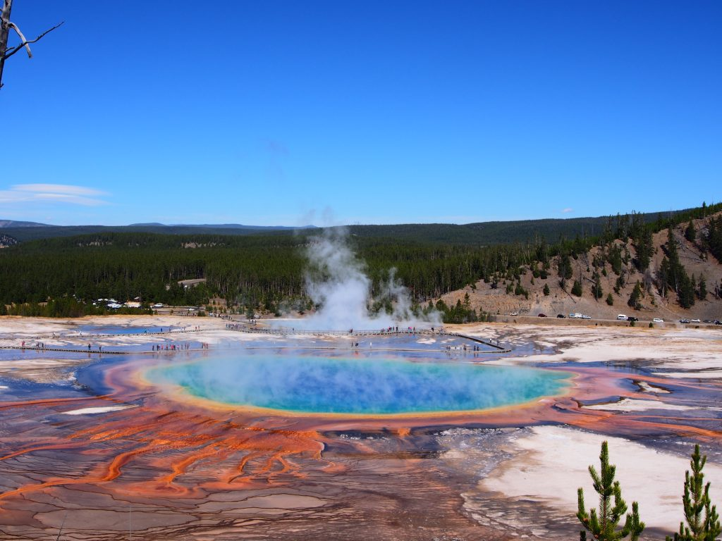 Grand Prismatic Hotspring- Yellowstone National Park