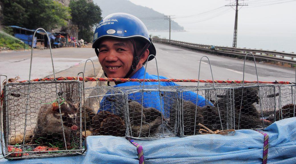 Man with squirrels on motorbike